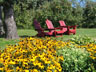 Red Chairs and Flowers
